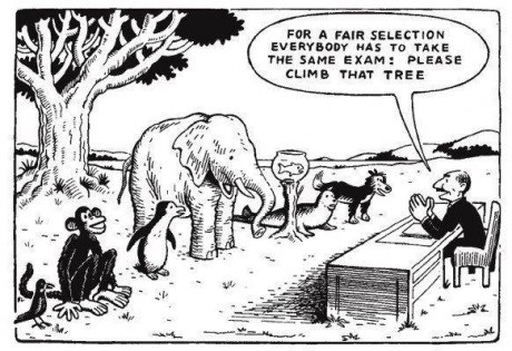 fair-selection-education